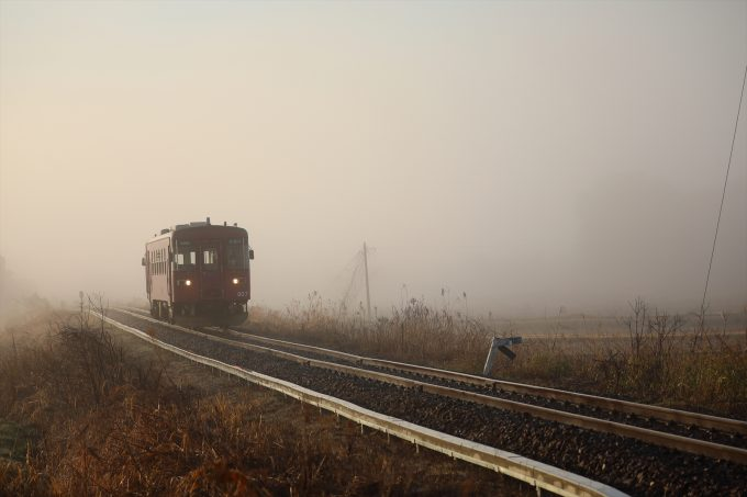 No.538 霧の長良川鉄道